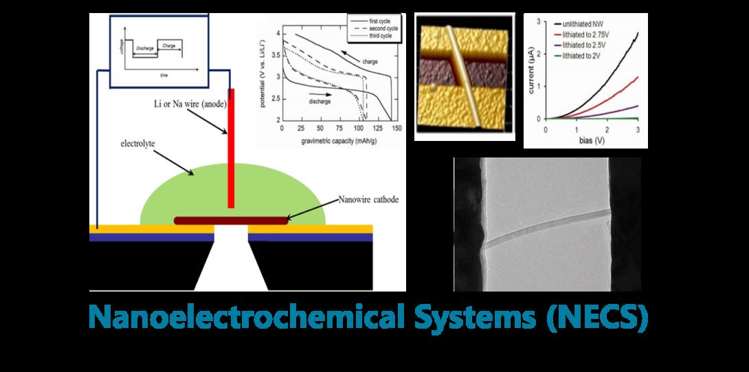 Nanoelectrochemical Systems