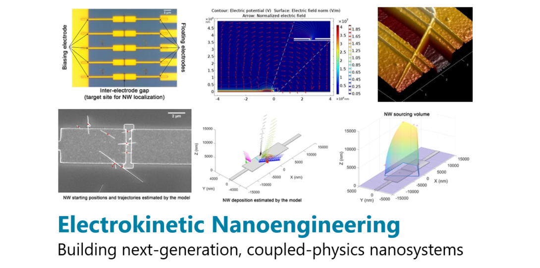 Electrokinetic nanoengineering