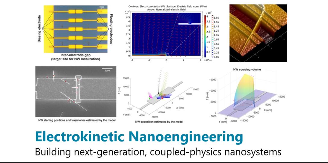 Electrokinetic nanoengineering
