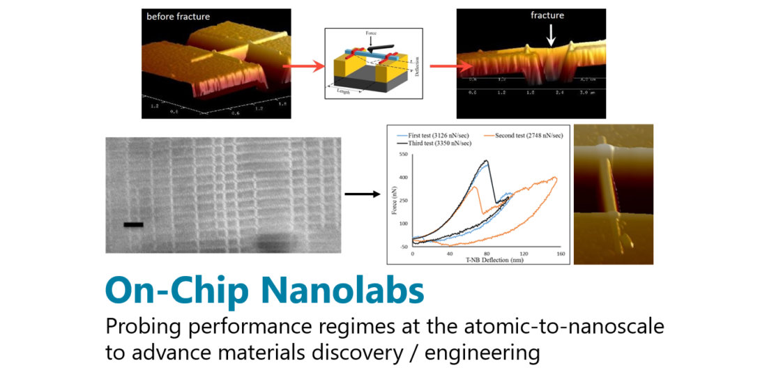 on-chip nanolabs