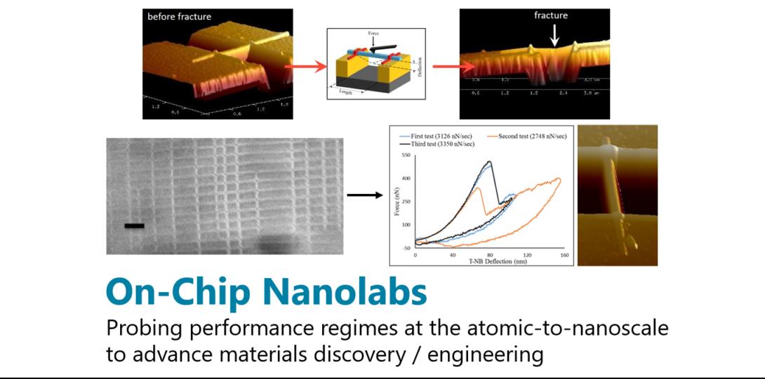 on-chip nanolabs